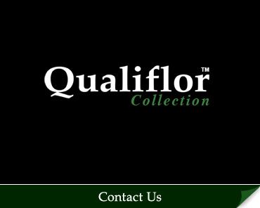 Contact the Qualiflor Collection